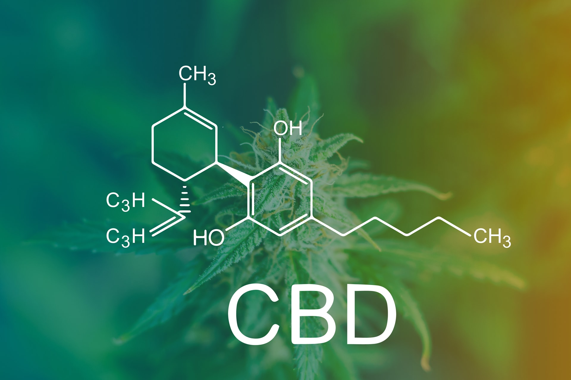 Social Media & Advertising Bans for CBD Products